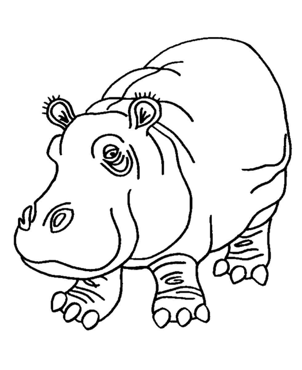 Раскраска грустный бегемот