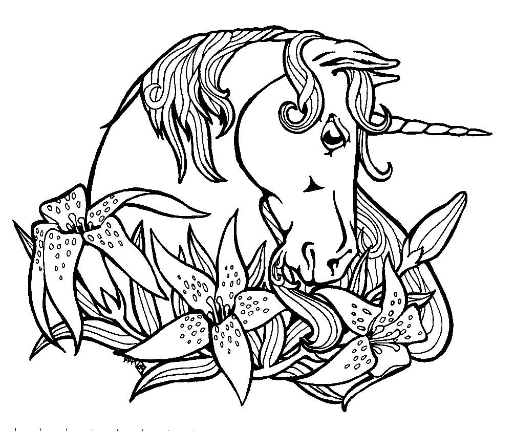 Раскраска Единорог с цветами