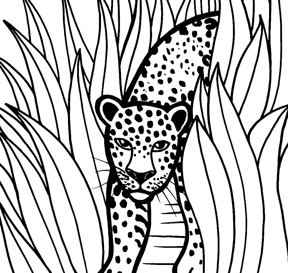 Раскраска ягуар в кустах
