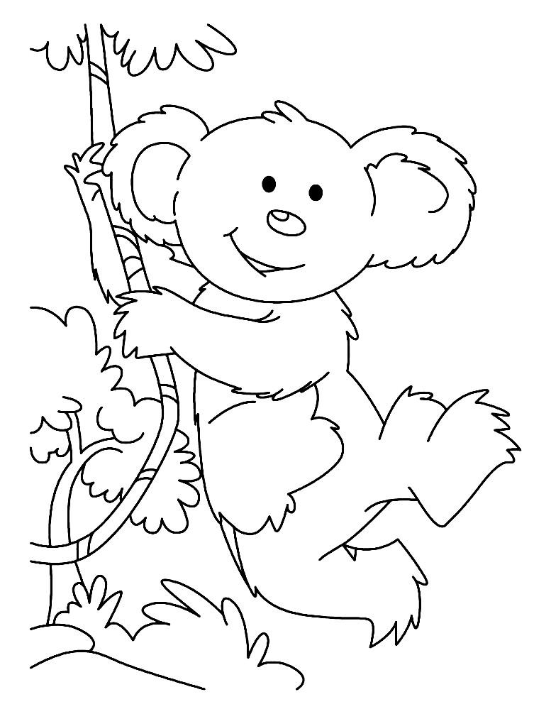 Раскраска смешная коала