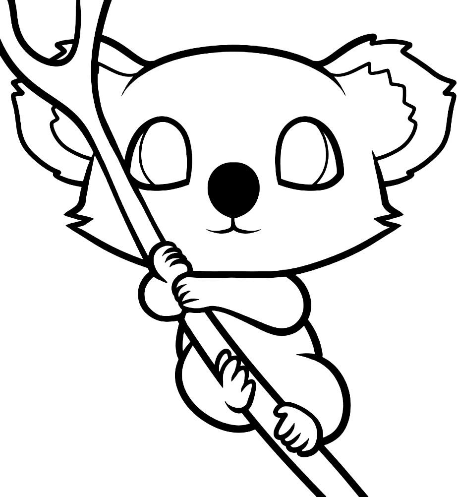 Раскраска детеныш коалы
