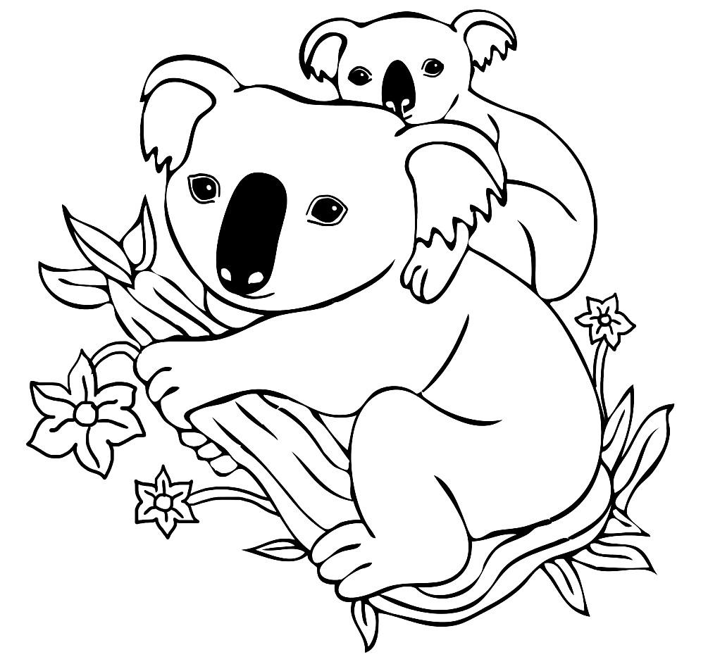 Раскраска коала с детенышем