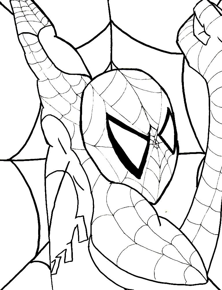 Раскраска Человек паук — мастер паутины