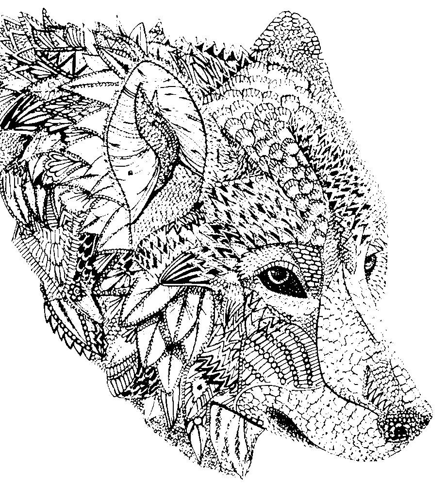 Раскраска антистресс морда волка