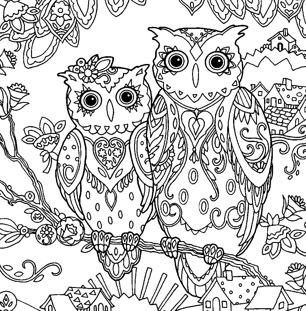 Раскраска антистресс две совы | Раскраски для детей ...