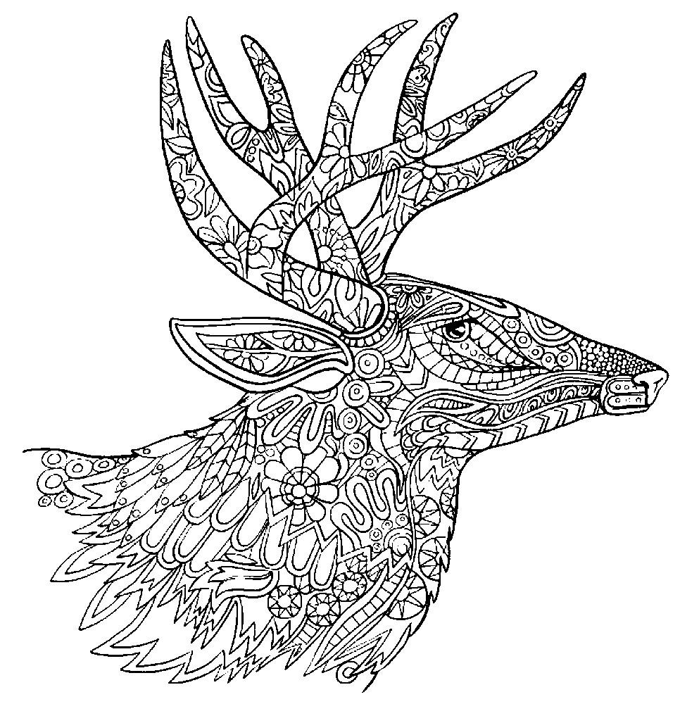 Раскраска антистресс голова оленя