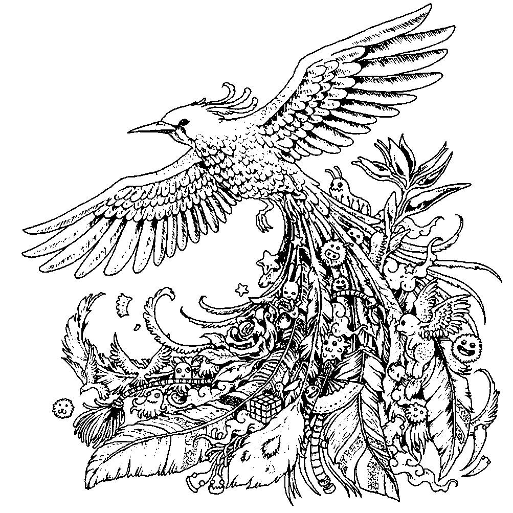 Раскраска антистресс птица с красивым хвостом