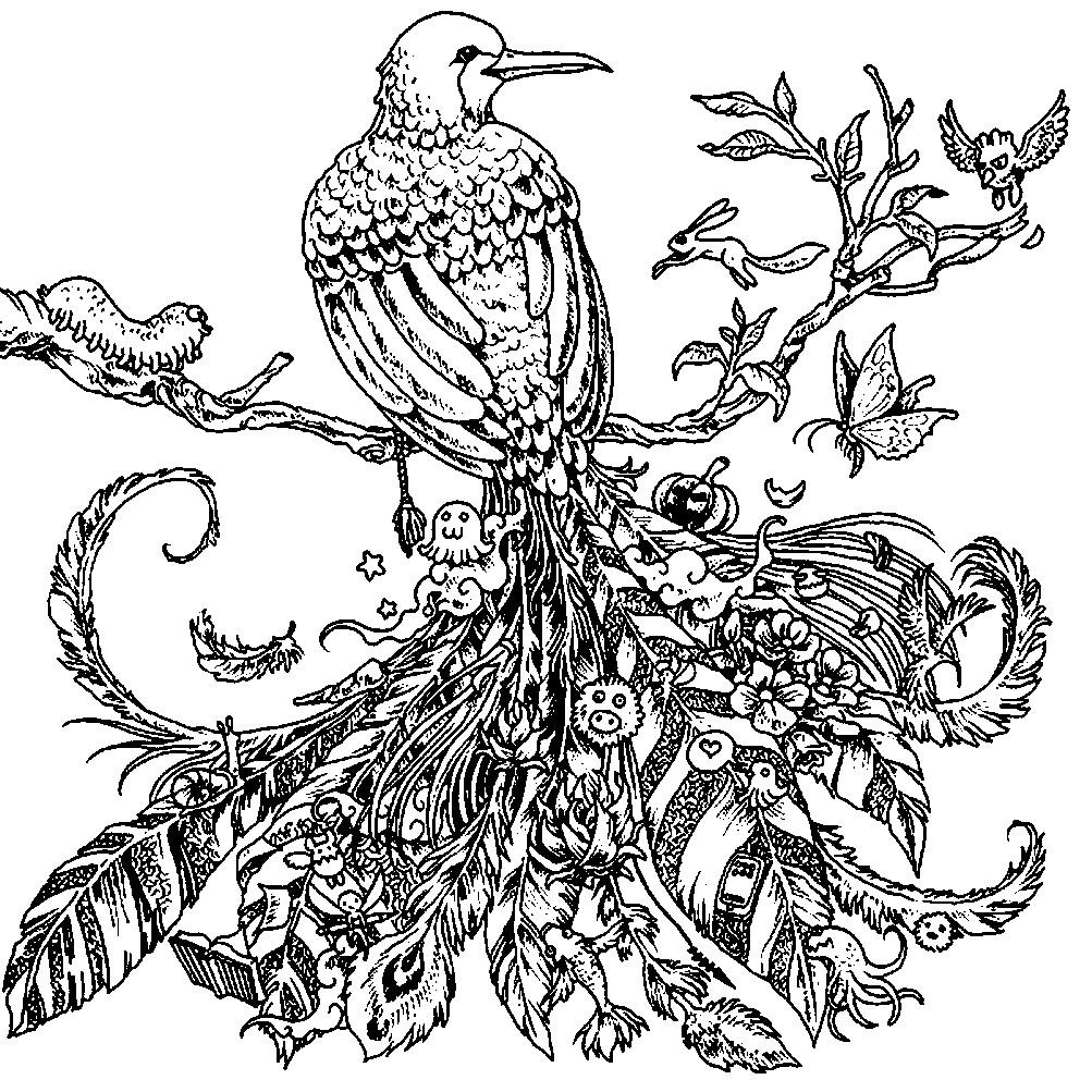 Раскраска антистресс райская птица