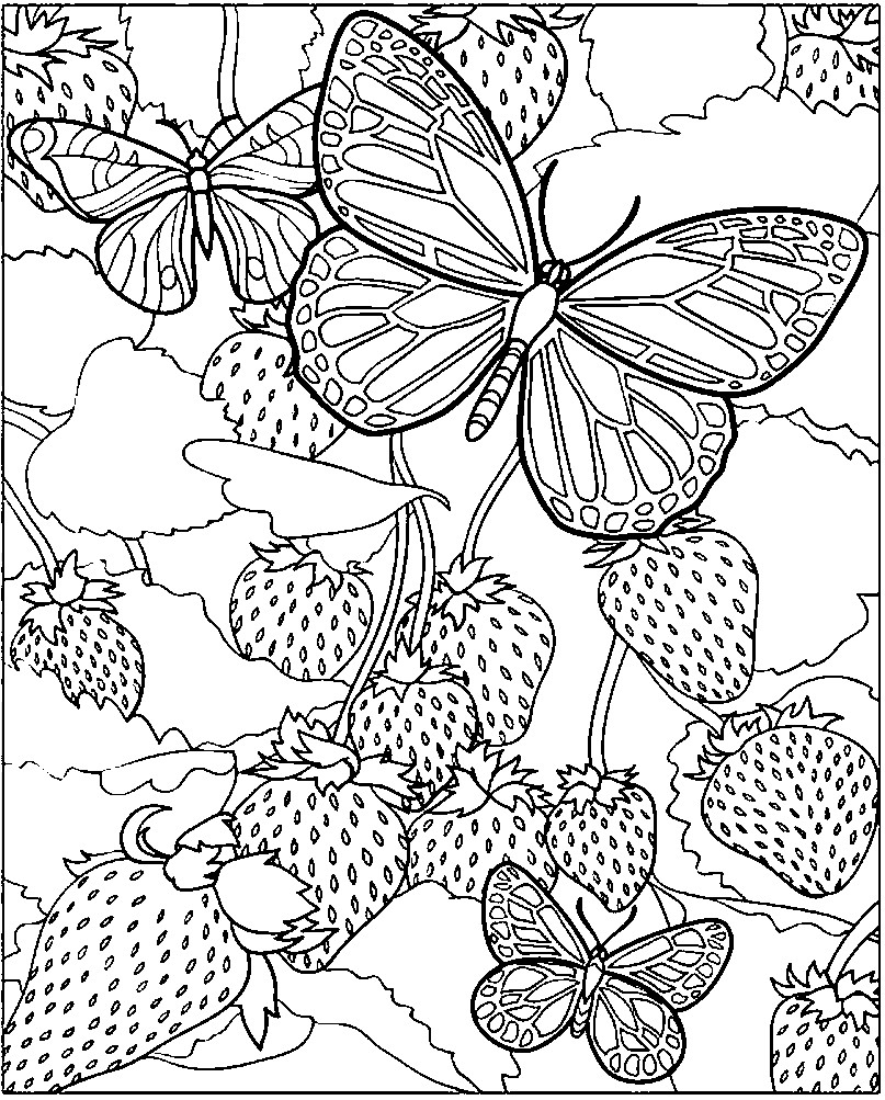 Раскраска антистресс бабочки