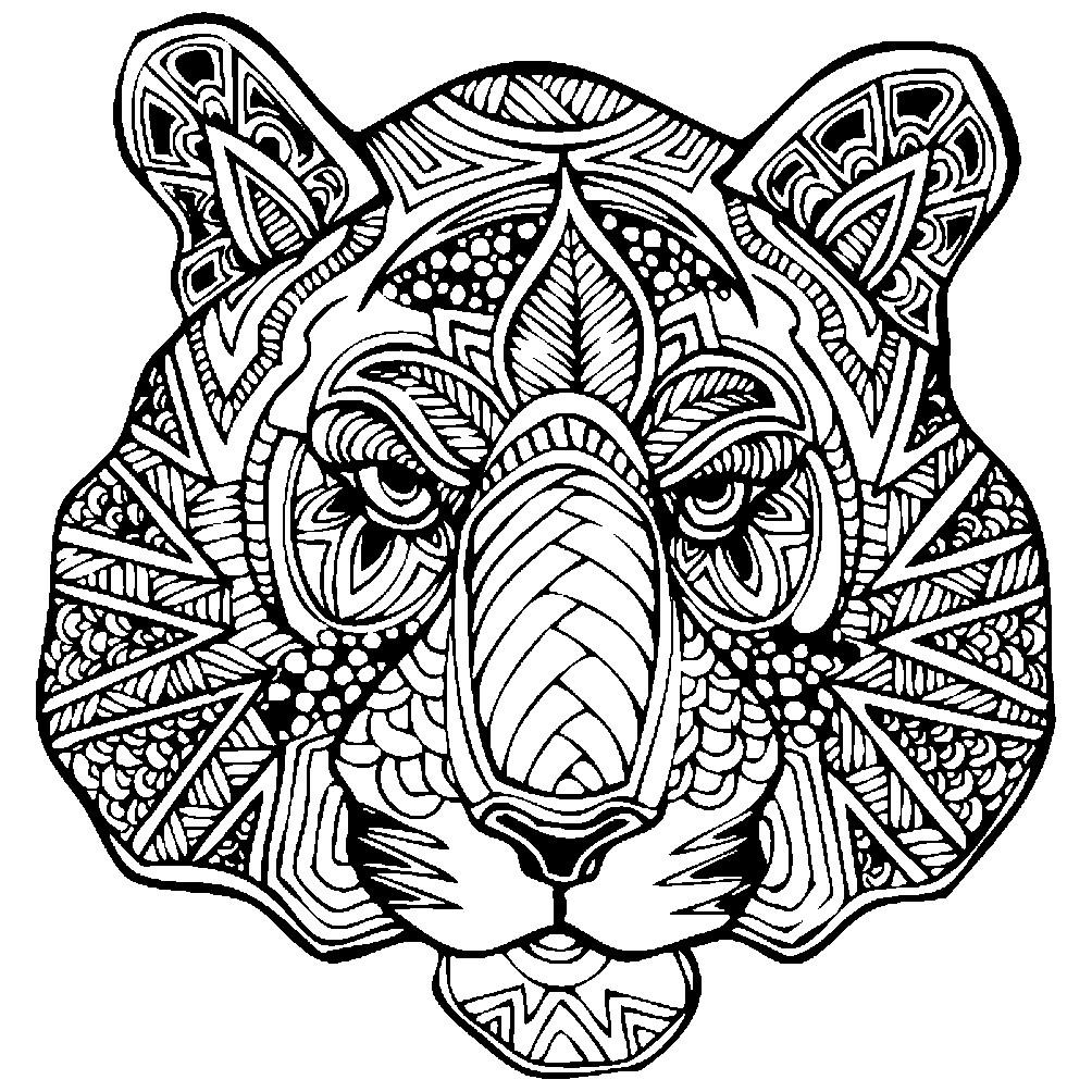 Раскраска антистресс голова тигра
