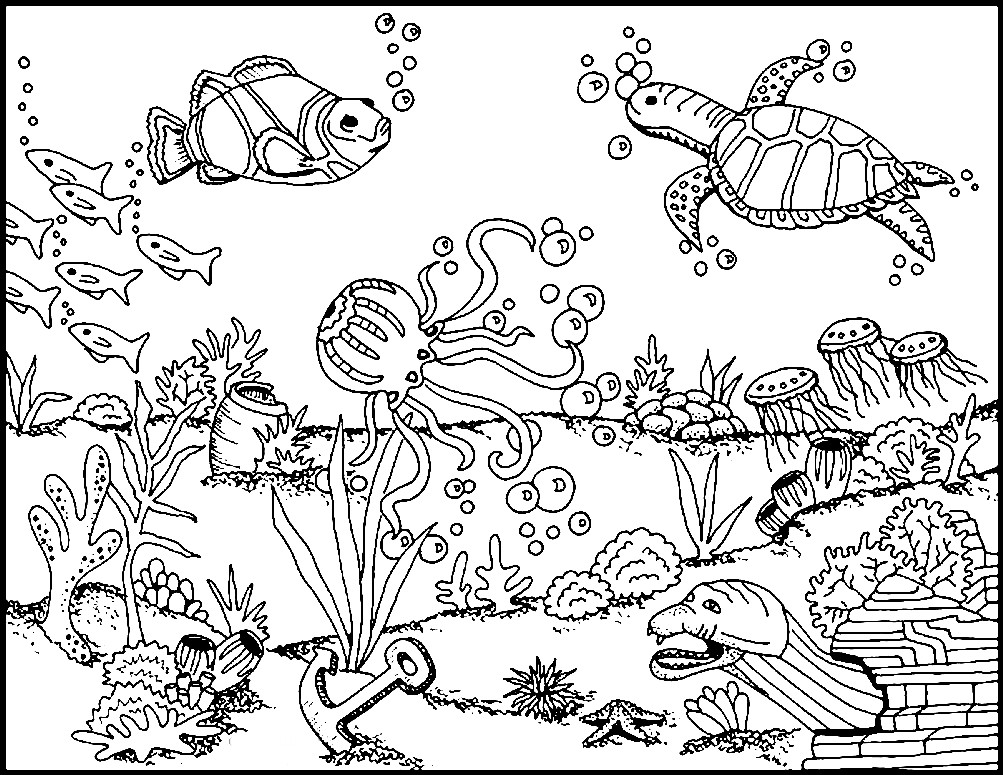 Раскраска морское дно