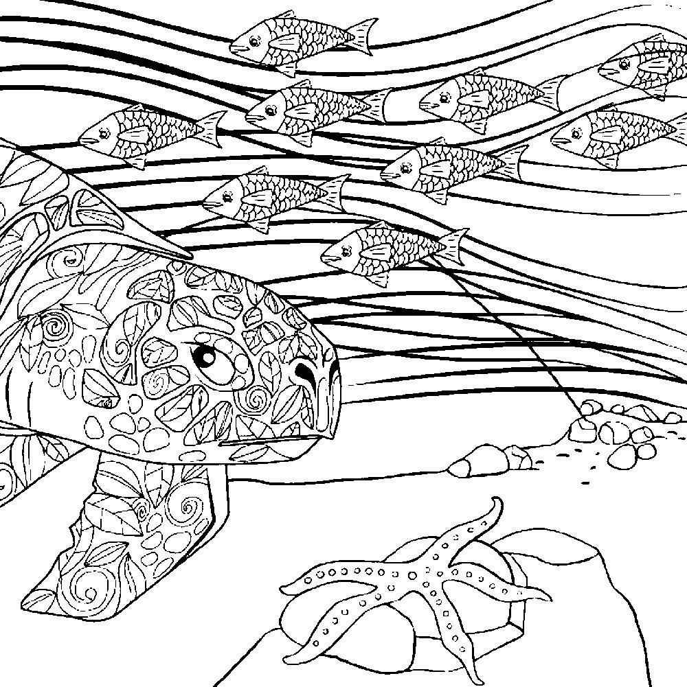 Раскраска арт терапия обитатели морского дна
