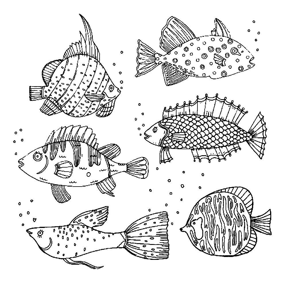 Раскраска виды речных и морских рыб