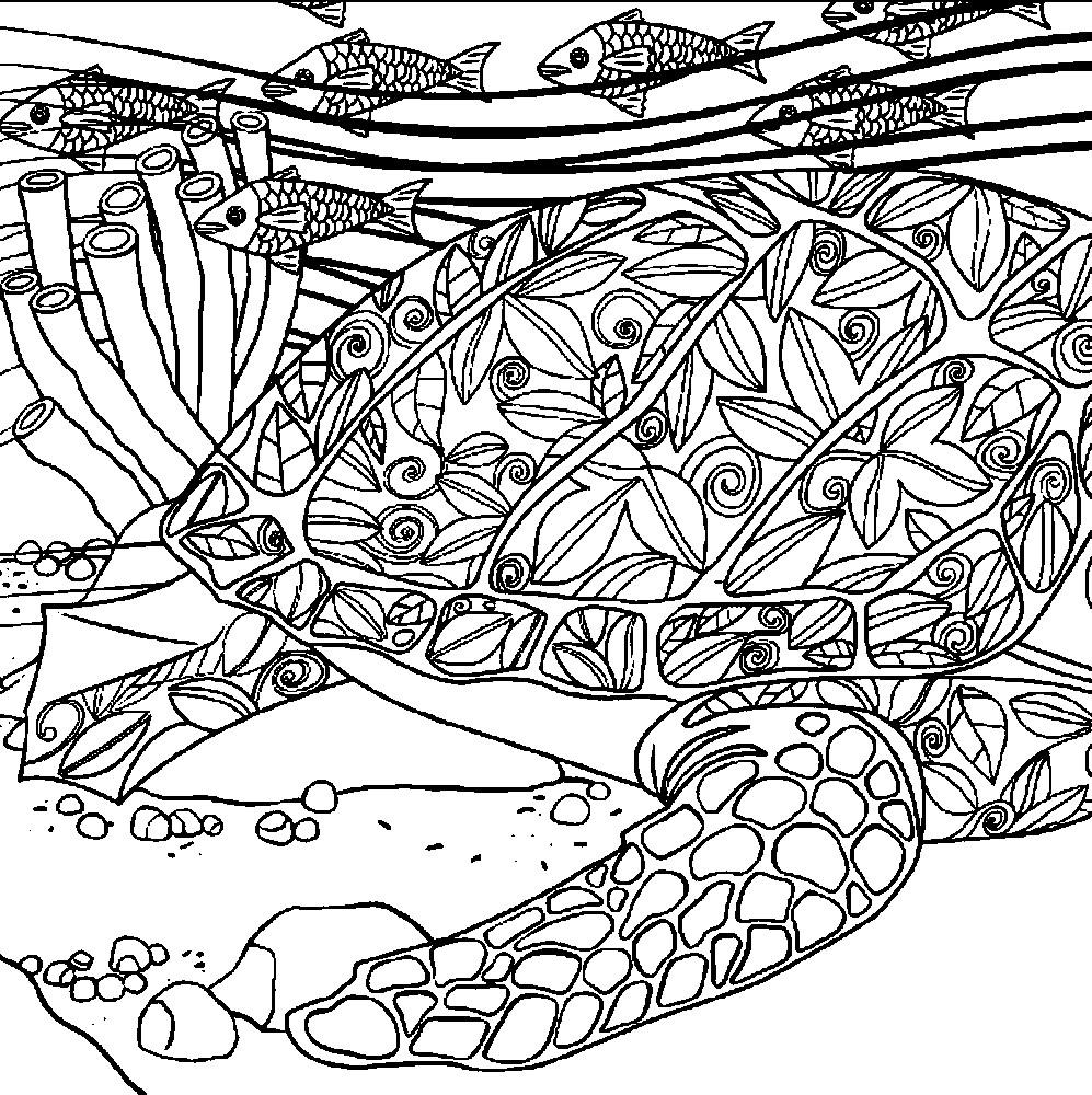 Раскраска антистресс морская черепаха | Раскраски для ...