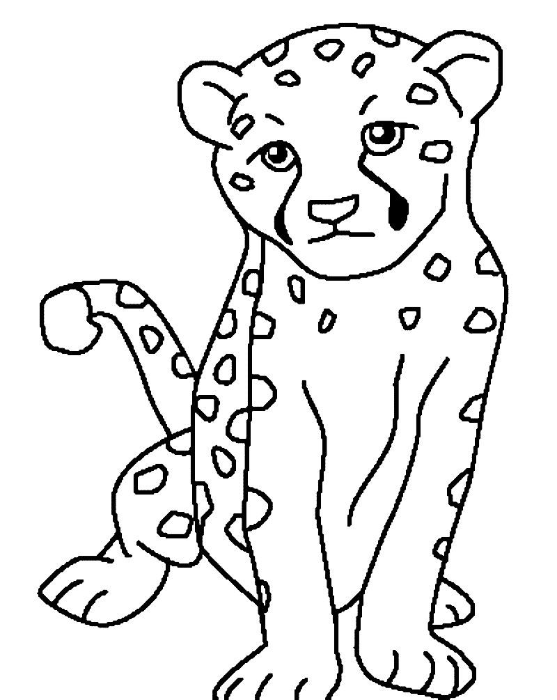 Раскраска маленький леопард