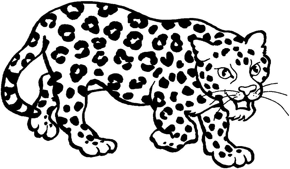 Раскраска злой леопард