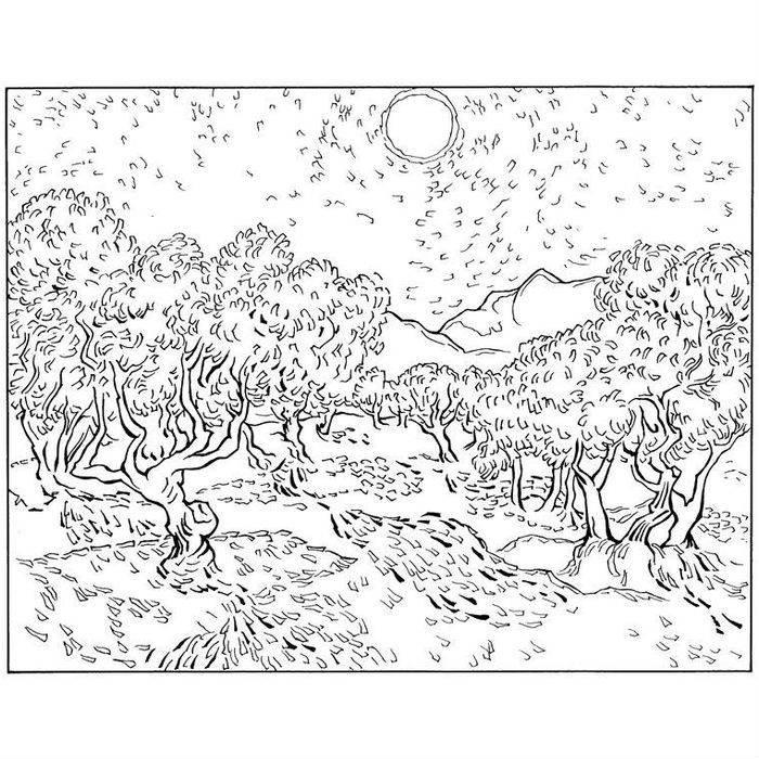 Раскраска Оливковые деревья (1889)
