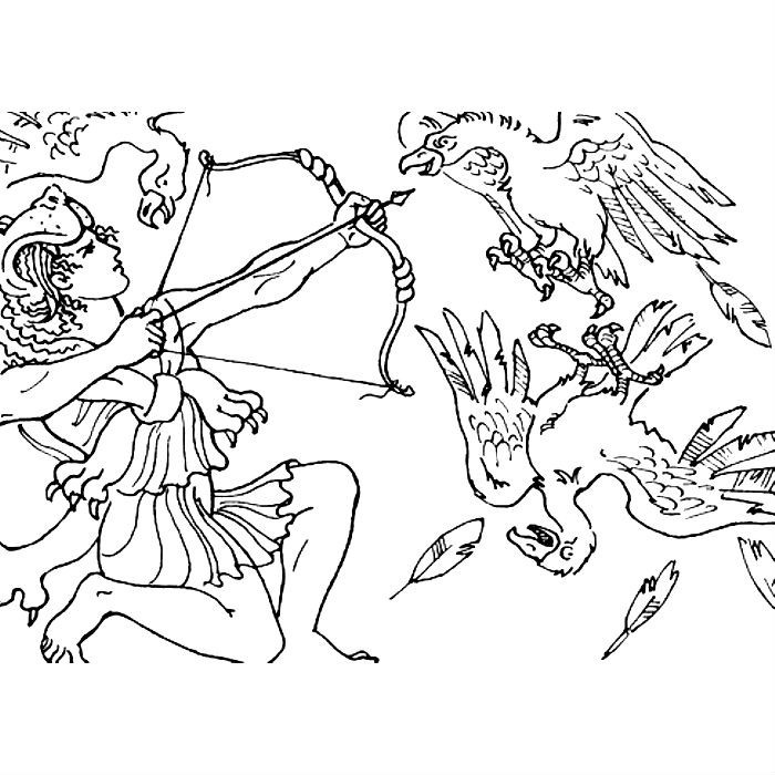 Подвиги геракла раскраска стимфалийские птицы