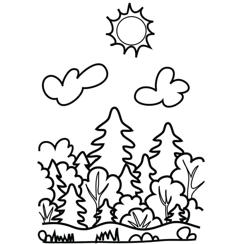 Раскраска лес для малышей