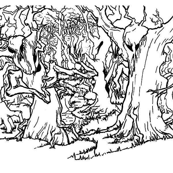 Раскраска таинственный лес