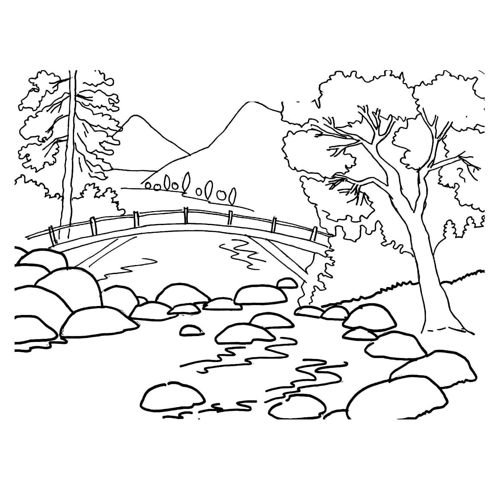 Раскраска речка в лесу