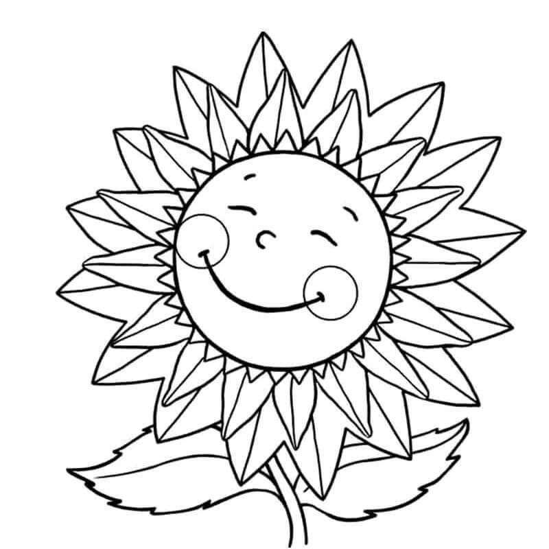 Раскраска улыбчивый подсолнух