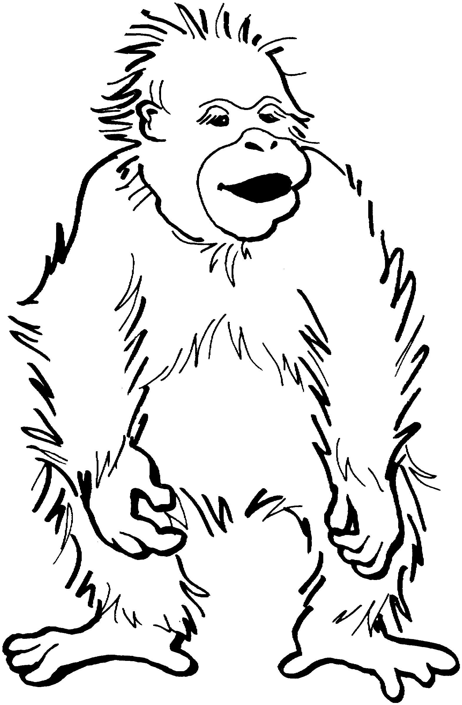 Раскраска счастливый малыш орангутанг