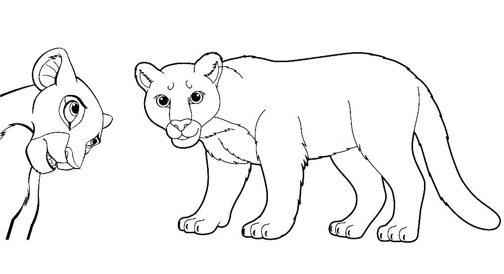 Раскраска львицы