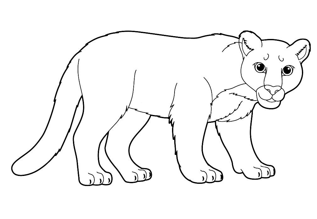 Раскраска львица