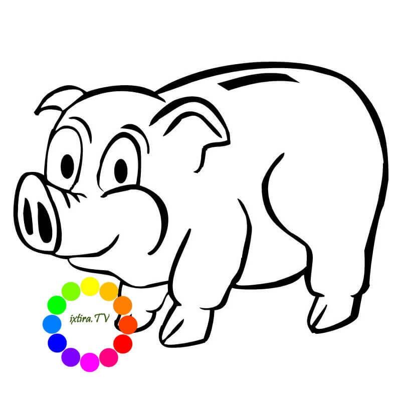 Раскраска свинья копилка