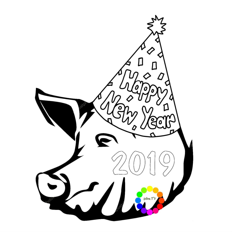 Раскраска свинья в Новогоднем колпаке