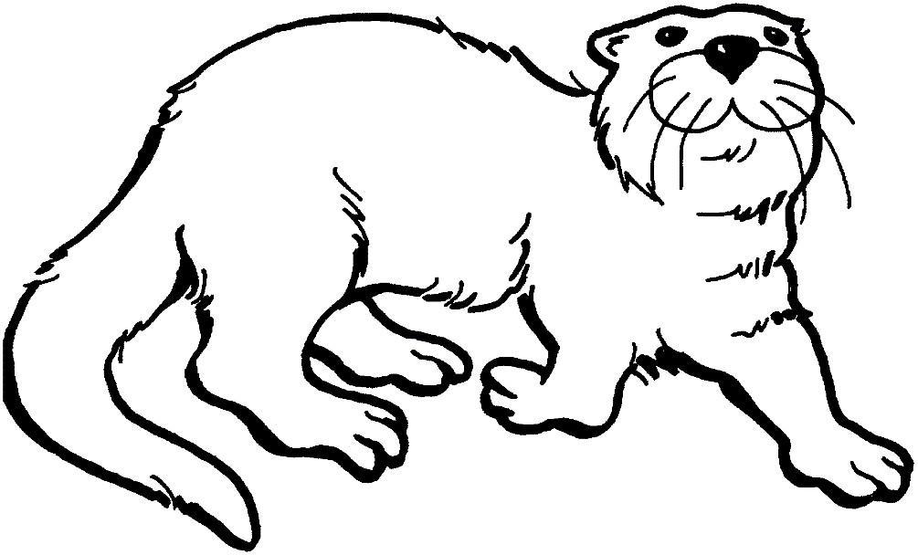 Раскраска otter