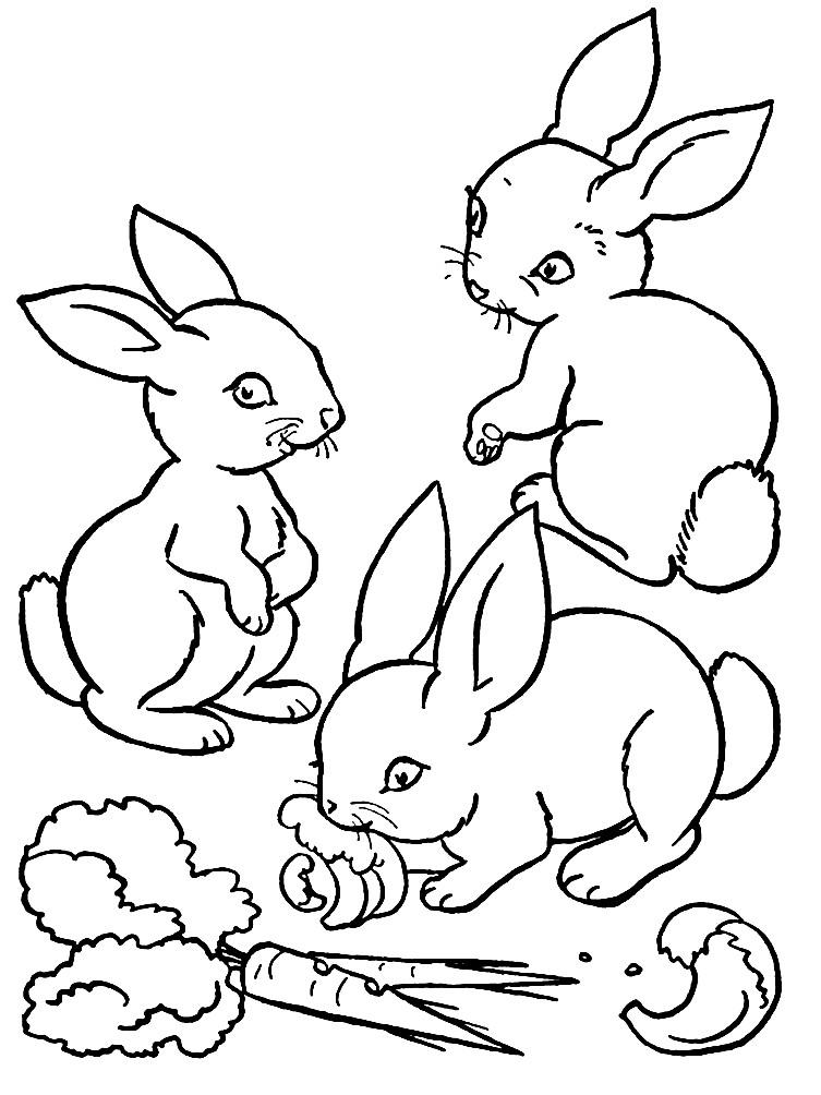 Раскраска крольчата