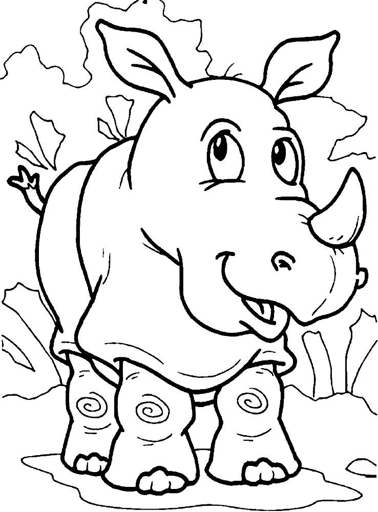 Раскраска ушастый носорог