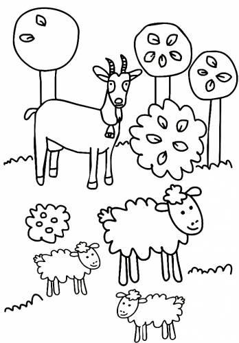Раскраска овечки и коза