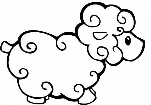 Раскраска барашек для малышей