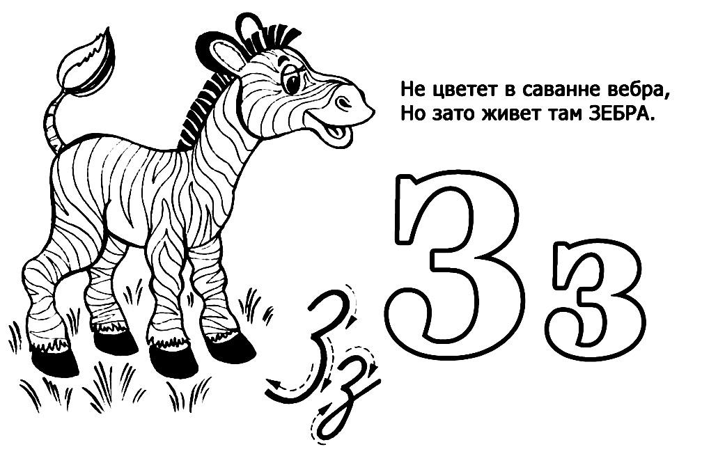 Раскраска зебра для малышей