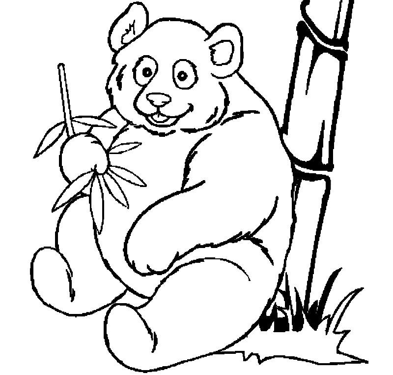 Раскраска большая панда