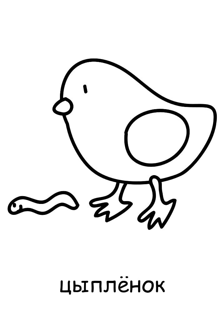 Раскраска игрушка цыпленок