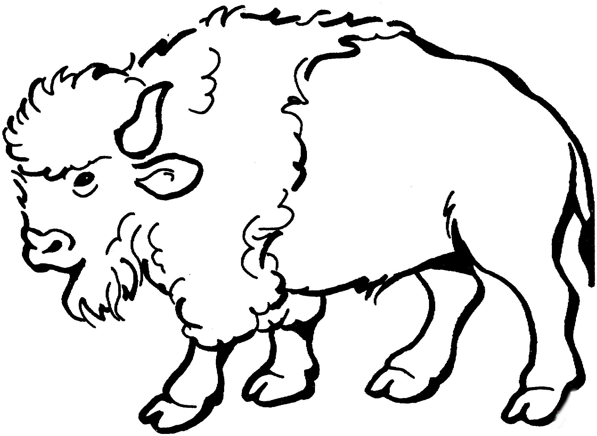 зимняя картинки овцебыка для раскраски пояснил, что