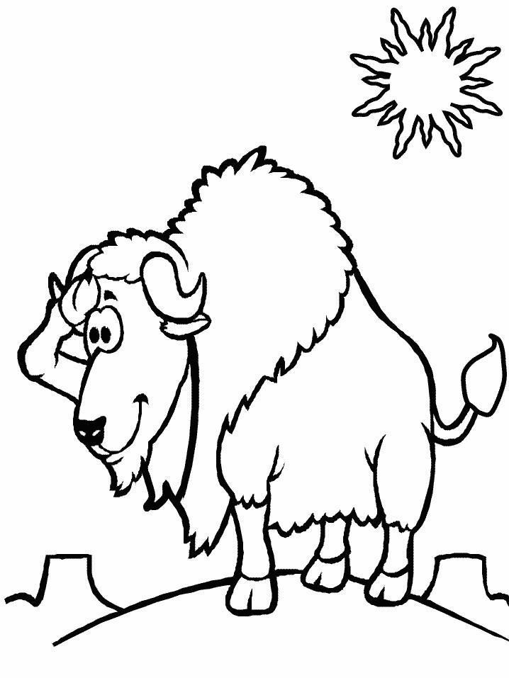 как картинки овцебыка для раскраски пробудившиеся