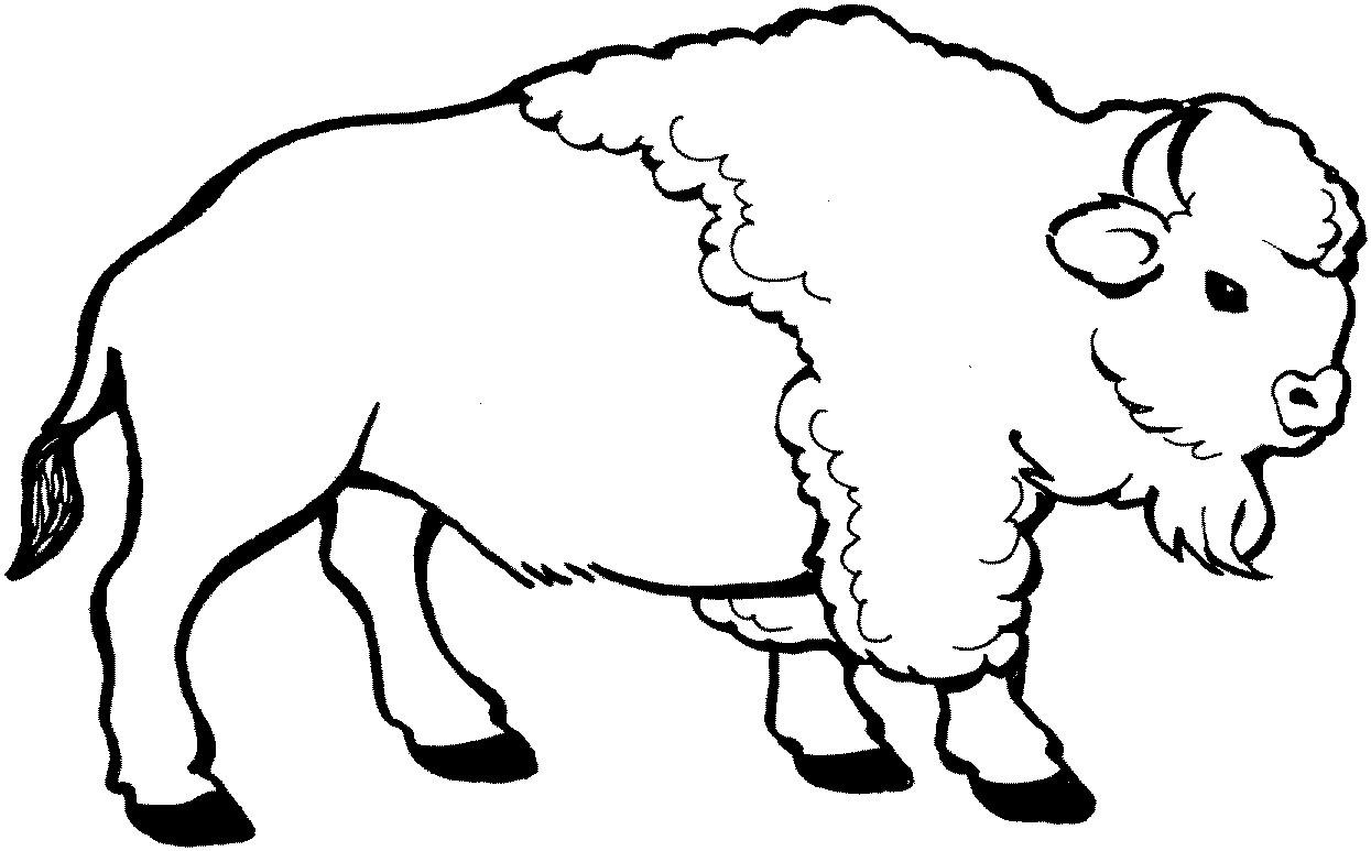всего картинки овцебыка для раскраски запястье девушек