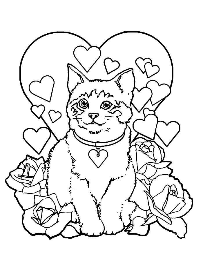 Раскраска валентинка с котёнком