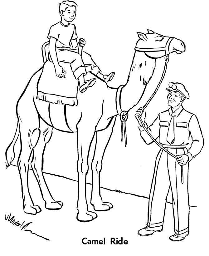 Раскраска катание на верблюдах