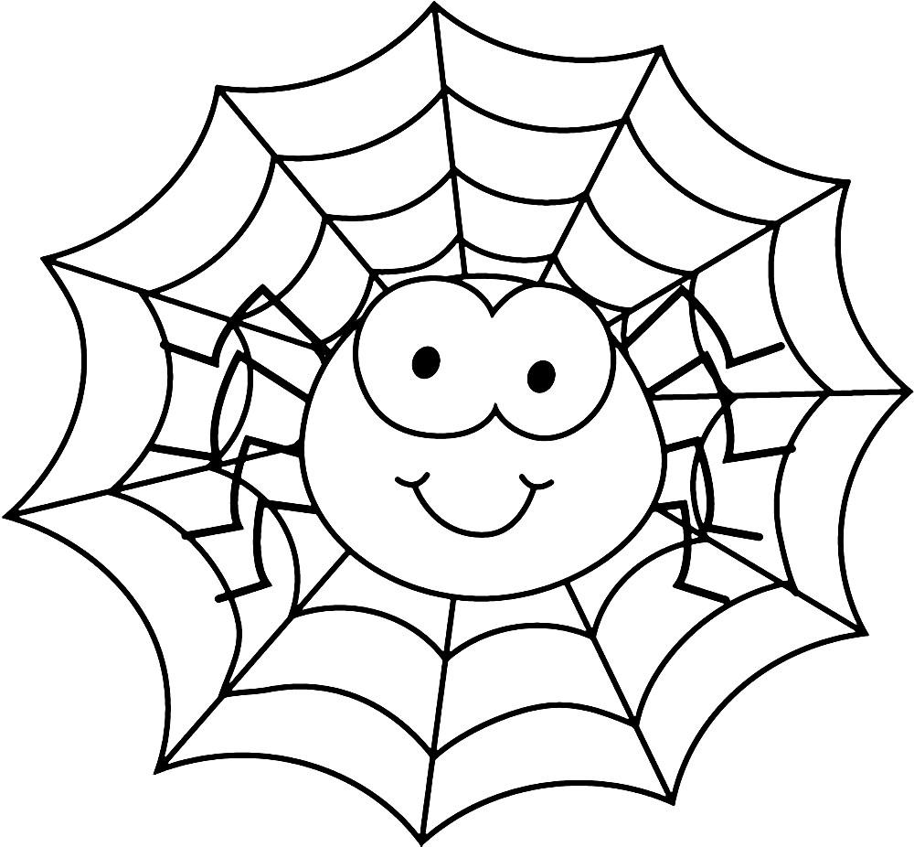 Раскраска паук в паутине
