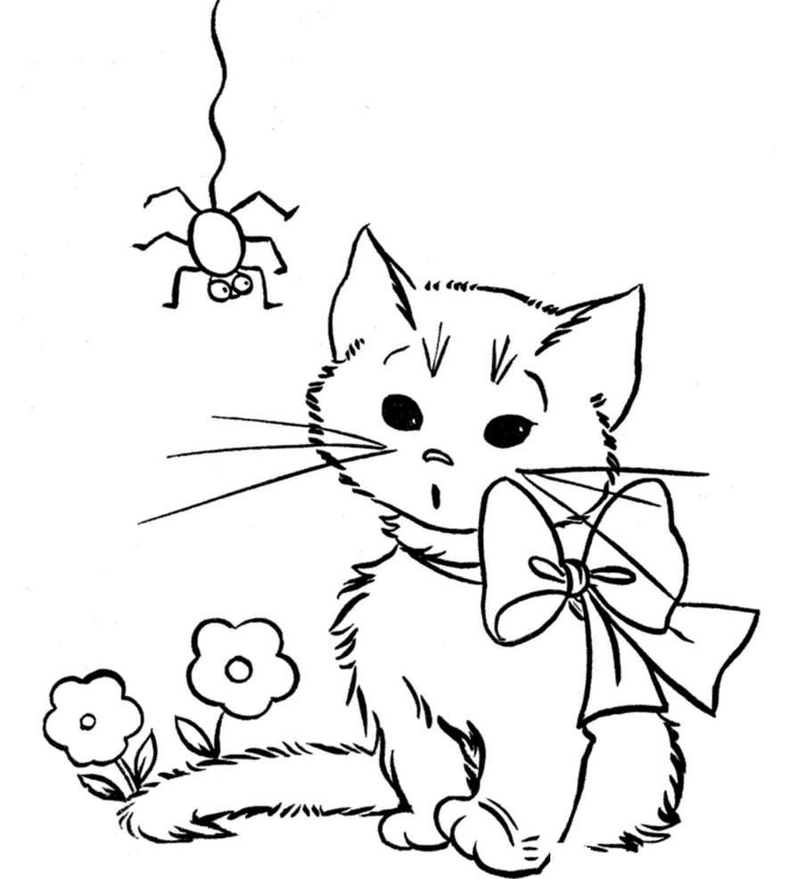 Раскраска котенок и паук