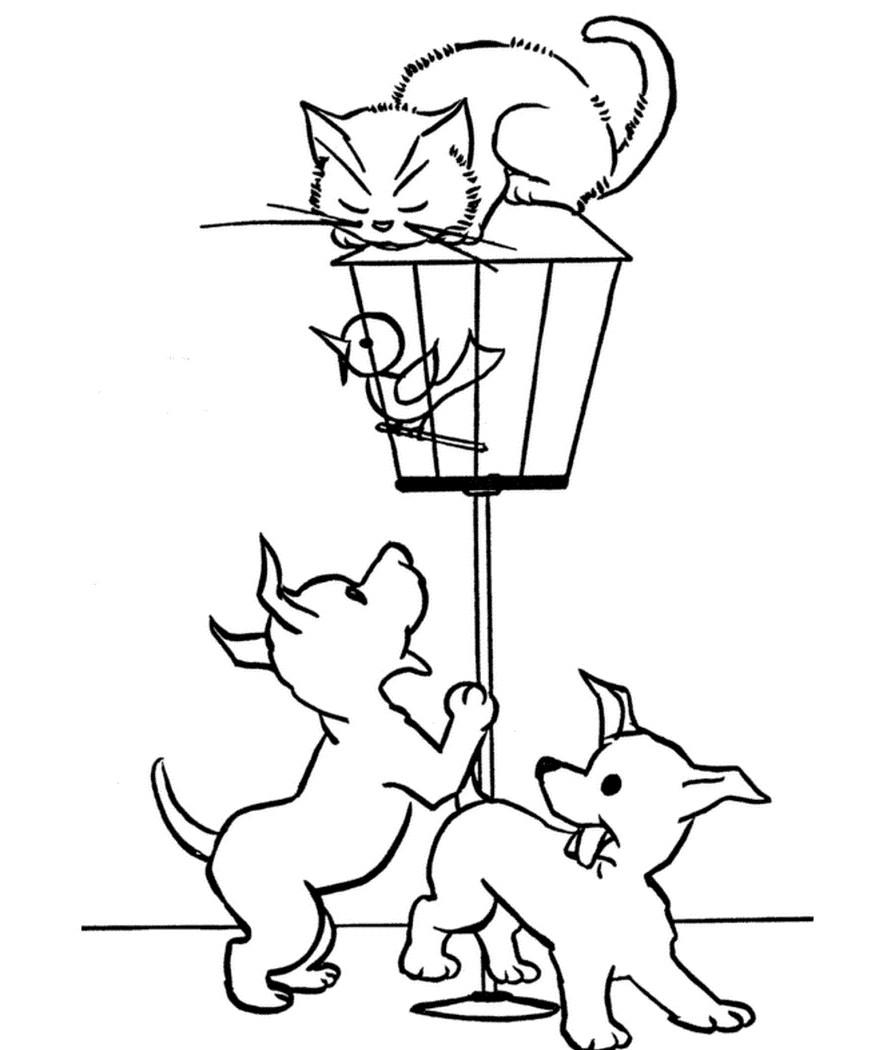Раскраска собаки атакуют кошку