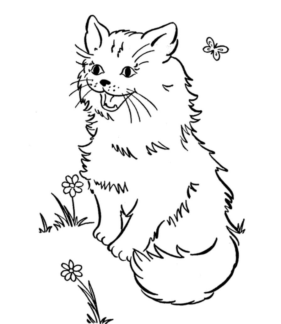 Раскраска веселый кот
