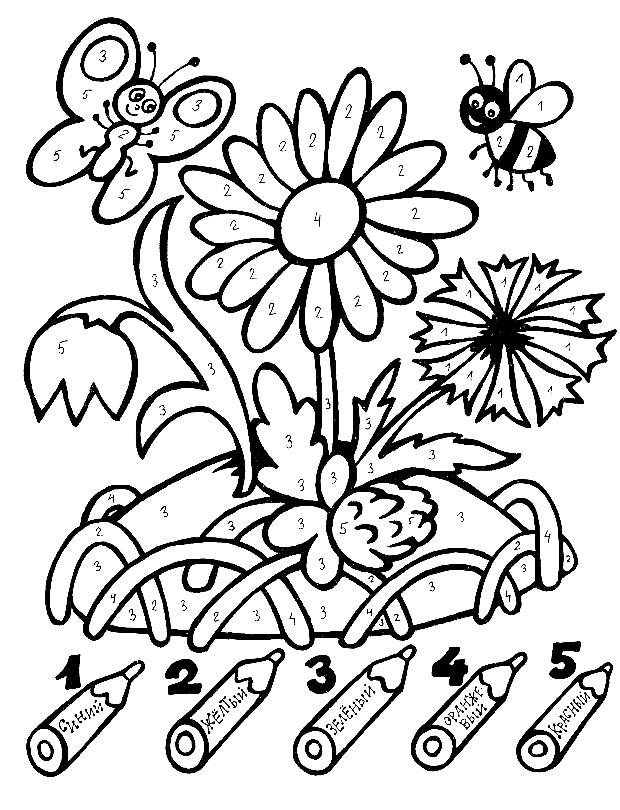 Раскраска цветы по цифрам